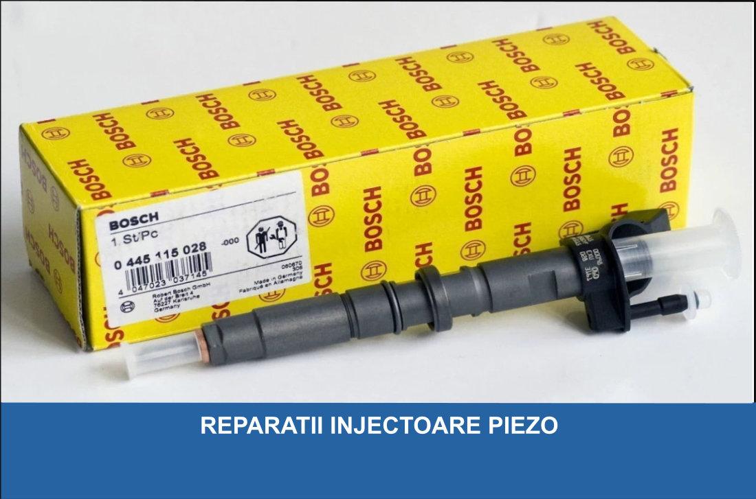Reparatii Injectoare Buzau / Reparatii Pompe Duze Buzau
